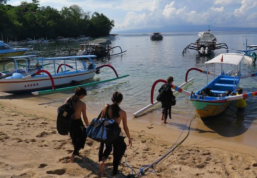 Discover the beautiful dive sites in Padang Bay Bali